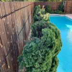 900mm-clear-arc-pool-fences-and-barriers-pool-safety-solutions