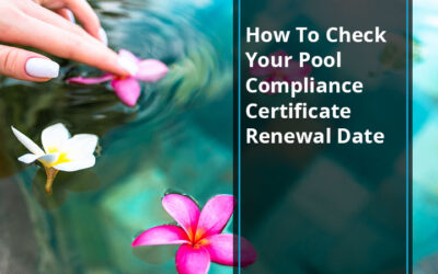 How To Check Your Pool Compliance Certificate Renewal Date