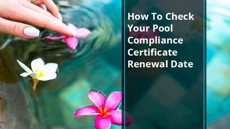 pool-compliance-certificate-renewal-date-poolsafetysolutions-blog